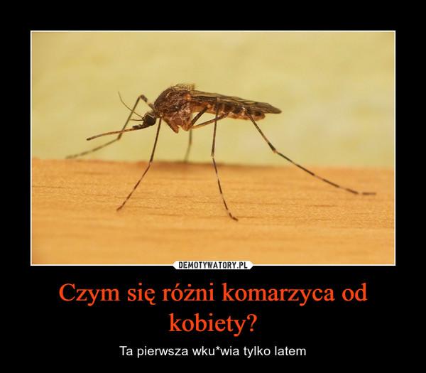 Czym się różni komarzyca od kobiety? – Ta pierwsza wku*wia tylko latem
