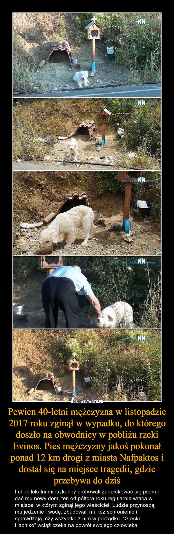 """Pewien 40-letni mężczyzna w listopadzie 2017 roku zginął w wypadku, do którego doszło na obwodnicy w pobliżu rzeki Evinos. Pies mężczyzny jakoś pokonał ponad 12 km drogi z miasta Nafpaktos i dostał się na miejsce tragedii, gdzie przebywa do dziś – I choć lokalni mieszkańcy próbowali zaopiekować się psem i dać mu nowy dom, ten od półtora roku regularnie wraca w miejsce, w którym zginął jego właściciel. Ludzie przynoszą mu jedzenie i wodę, zbudowali mu też schronienie i sprawdzają, czy wszystko z nim w porządku. """"Grecki Hachiko"""" wciąż czeka na powrót swojego człowieka"""