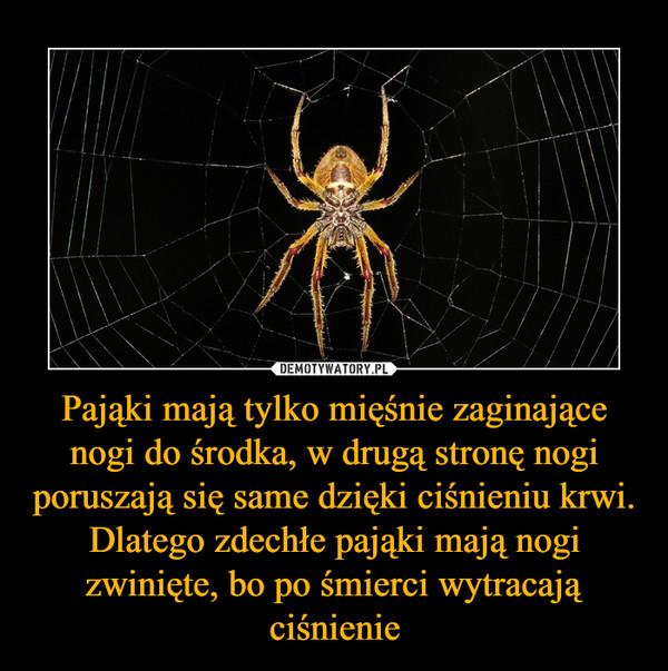 Pająki mają tylko mięśnie zaginające nogi do środka, w drugą stronę nogi poruszają się same dzięki ciśnieniu krwi. Dlatego zdechłe pająki mają nogi zwinięte, bo po śmierci wytracają ciśnienie –