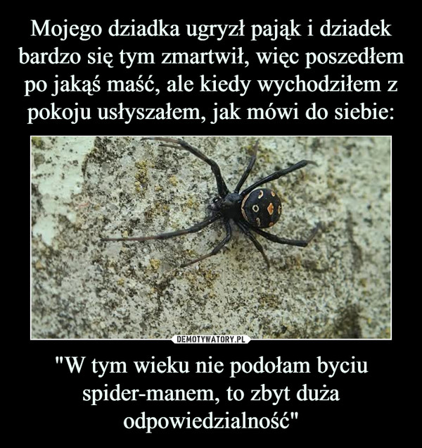 """""""W tym wieku nie podołam byciu spider-manem, to zbyt duża odpowiedzialność"""" –"""