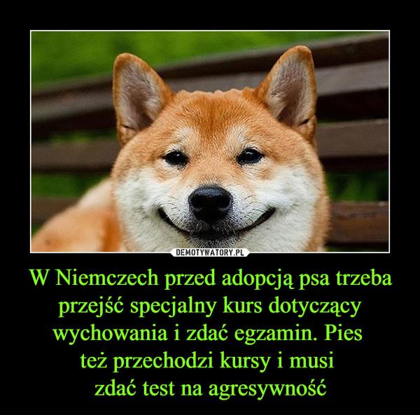 W Niemczech przed adopcją psa trzeba przejść specjalny kurs dotyczący wychowania i zdać egzamin. Pies też przechodzi kursy i musi zdać test na agresywność –