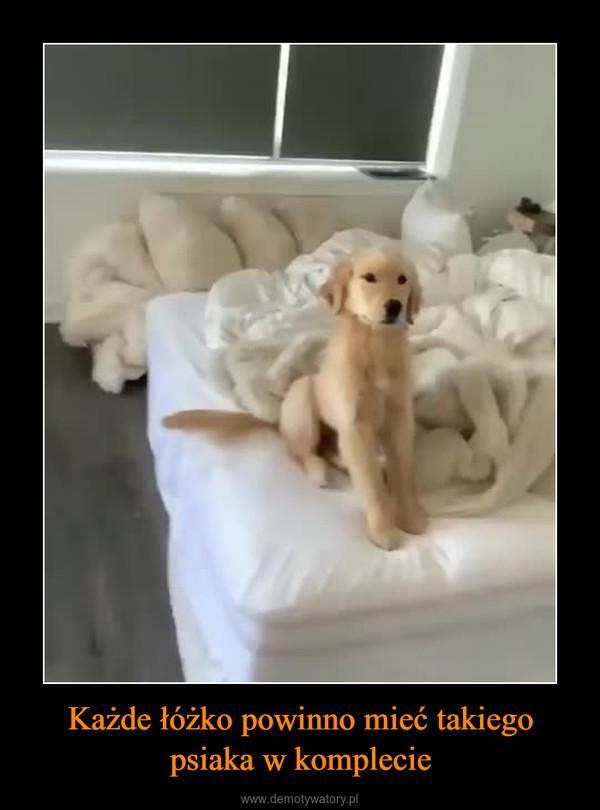 Każde łóżko powinno mieć takiego psiaka w komplecie –