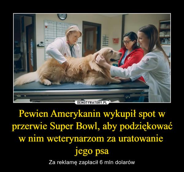 Pewien Amerykanin wykupił spot w przerwie Super Bowl, aby podziękować w nim weterynarzom za uratowanie jego psa – Za reklamę zapłacił 6 mln dolarów