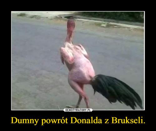 Dumny powrót Donalda z Brukseli.