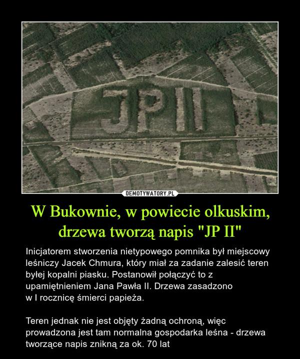 """W Bukownie, w powiecie olkuskim, drzewa tworzą napis """"JP II"""" – Inicjatorem stworzenia nietypowego pomnika był miejscowy leśniczy Jacek Chmura, który miał za zadanie zalesić teren byłej kopalni piasku. Postanowił połączyć to z upamiętnieniem Jana Pawła II. Drzewa zasadzono w I rocznicę śmierci papieża. Teren jednak nie jest objęty żadną ochroną, więc prowadzona jest tam normalna gospodarka leśna - drzewa tworzące napis znikną za ok. 70 lat"""
