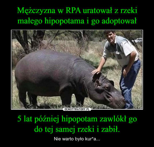Mężczyzna w RPA uratował z rzeki małego hipopotama i go adoptował 5 lat później hipopotam zawlókł go do tej samej rzeki i zabił.