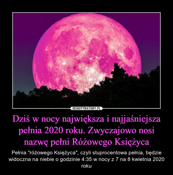 """Dziś w nocy największa i najjaśniejsza pełnia 2020 roku. Zwyczajowo nosi nazwę pełni Różowego Księżyca – Pełnia """"różowego Księżyca"""", czyli stuprocentowa pełnia, będzie widoczna na niebie o godzinie 4:35 w nocy z 7 na 8 kwietnia 2020 roku"""