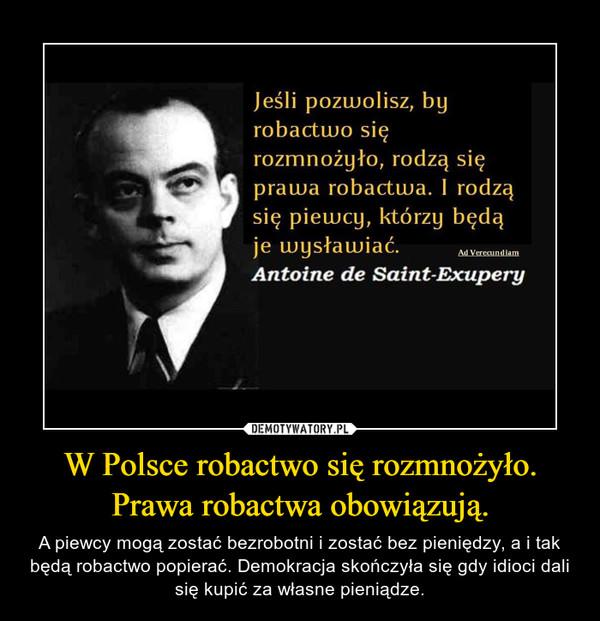 W Polsce robactwo się rozmnożyło. Prawa robactwa obowiązują. – A piewcy mogą zostać bezrobotni i zostać bez pieniędzy, a i tak będą robactwo popierać. Demokracja skończyła się gdy idioci dali się kupić za własne pieniądze.
