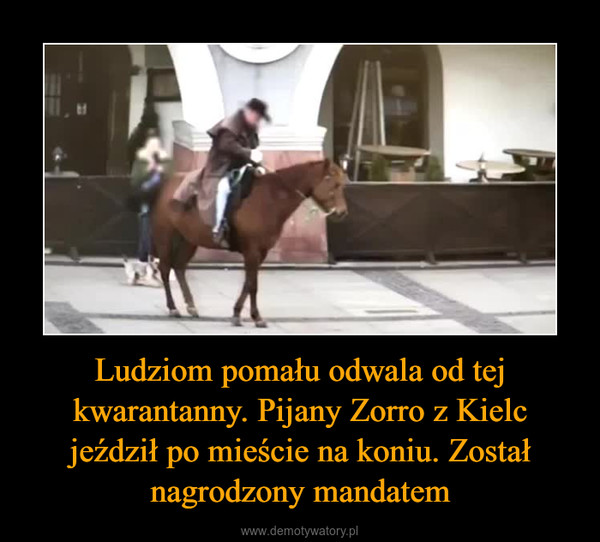 Ludziom pomału odwala od tej kwarantanny. Pijany Zorro z Kielc jeździł po mieście na koniu. Został nagrodzony mandatem –