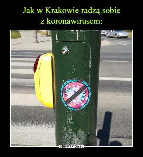 Jak w Krakowie radzą sobie z koronawirusem: