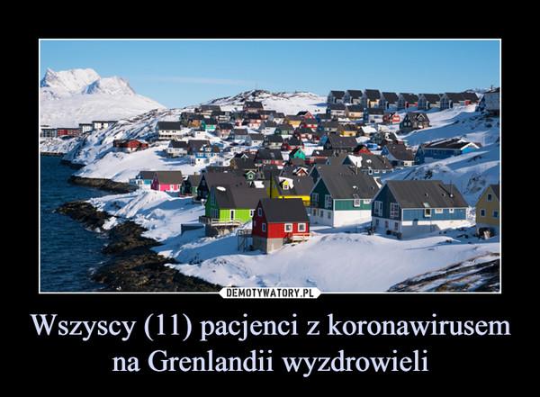 Wszyscy (11) pacjenci z koronawirusem na Grenlandii wyzdrowieli