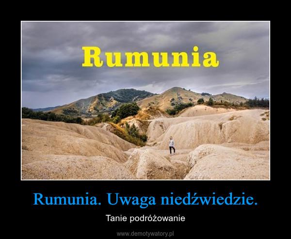 Rumunia. Uwaga niedźwiedzie. – Tanie podróżowanie