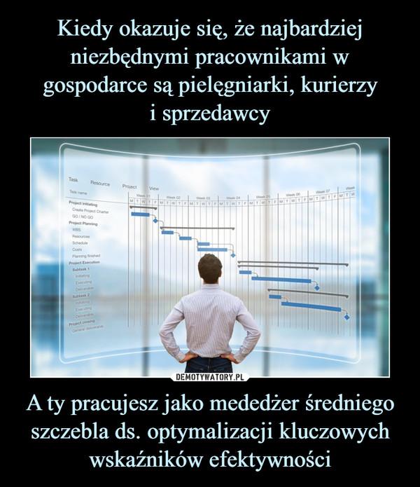 A ty pracujesz jako mededżer średniego szczebla ds. optymalizacji kluczowych wskaźników efektywności –