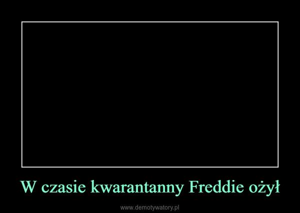 W czasie kwarantanny Freddie ożył –