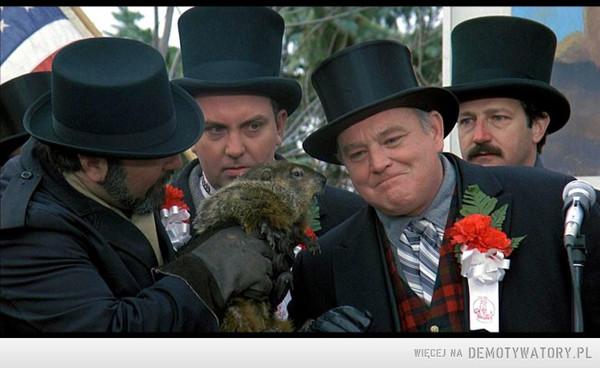 W Punxsutawney świstak wyjrzał z nory i zobaczył Ostry Cień Mgły – Wyborów w tym roku nie będzie !!