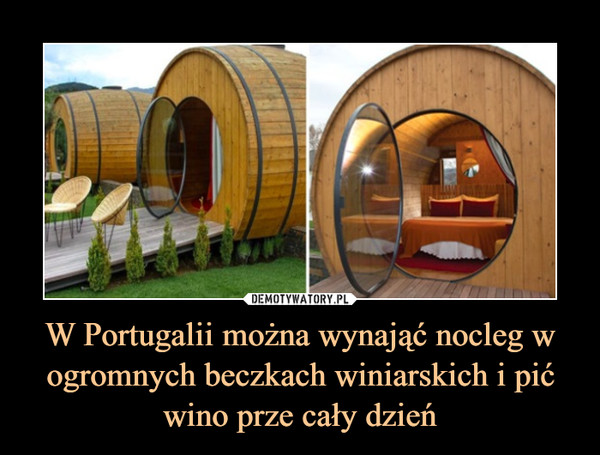 W Portugalii można wynająć nocleg w ogromnych beczkach winiarskich i pić wino prze cały dzień –