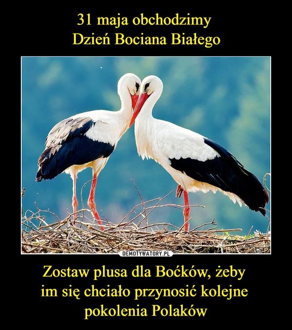 Zostaw plusa dla Boćków, żeby im się chciało przynosić kolejne pokolenia Polaków –