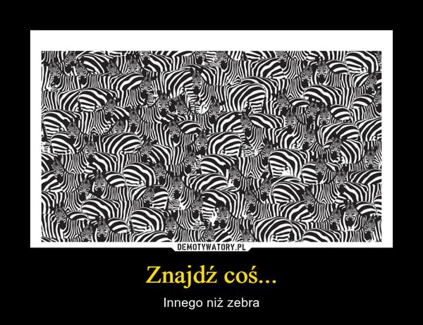 Znajdź coś... – Innego niż zebra