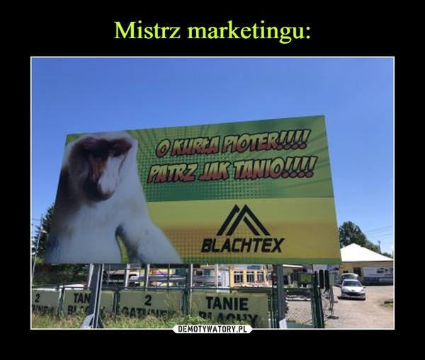 Mistrz marketingu: