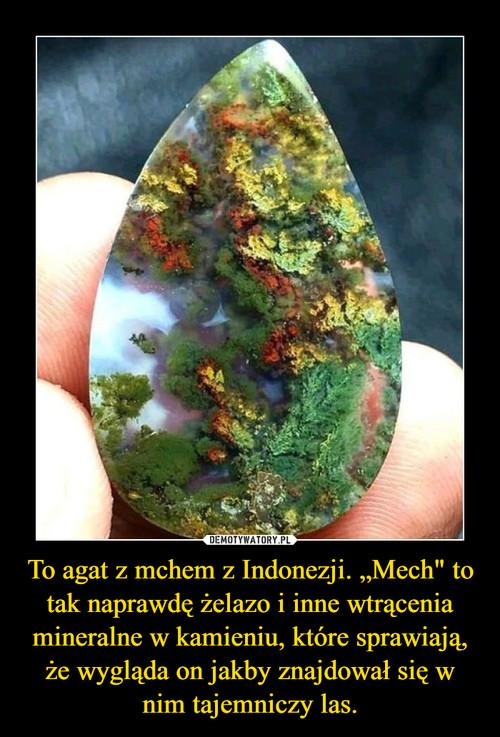 """To agat z mchem z Indonezji. """"Mech"""" to tak naprawdę żelazo i inne wtrącenia mineralne w kamieniu, które sprawiają, że wygląda on jakby znajdował się w nim tajemniczy las."""
