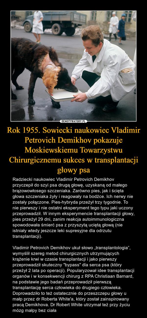 """Rok 1955. Sowiecki naukowiec Vladimir Petrovich Demikhov pokazuje Moskiewskiemu Towarzystwu Chirurgicznemu sukces w transplantacji głowy psa – Radziecki naukowiec Vladimir Petrovich Demikhov przyczepił do szyi psa drugą głowę, uzyskaną od małego brązowowłosego szczeniaka. Zarówno pies, jak i ścięta głowa szczeniaka żyły i reagowały na bodźce. Ich nerwy nie zostały połączone. Pies-hybryda przeżył trzy tygodnie. To nie pierwszy i nie ostatni eksperyment tego typu jaki uczony przeprowadził. W innym eksperymencie transplantacji głowy, pies przeżył 29 dni, zanim reakcja autoimmunologiczna spowodowała śmierć psa z przyszytą uciętą głową (nie istniały wtedy jeszcze leki supresyjne dla odrzutu transplantacji).Vladimir Petrovich Demikhov ukuł słowo """"transplantologia"""", wymyślił szereg metod chirurgicznych utrzymujących krążenie krwi w czasie transplantacji i jako pierwszy przeprowadził skuteczny """"bypass"""" dla serca psa (który przeżył 2 lata po operacji). Popularyzował idee transplantacji organów i w konsekwencji chirurg z RPA Christiaan Barnard, na podstawie jego badań przeprowadził pierwszą transplantację serca człowieka do drugiego człowieka. Doprowadziło to też ostatecznie do przeszczepu głowy u małp przez dr Roberta White'a, który został zainspirowany pracą Demikhova. Dr Robert White utrzymał też przy życiu mózg małpy bez ciała"""