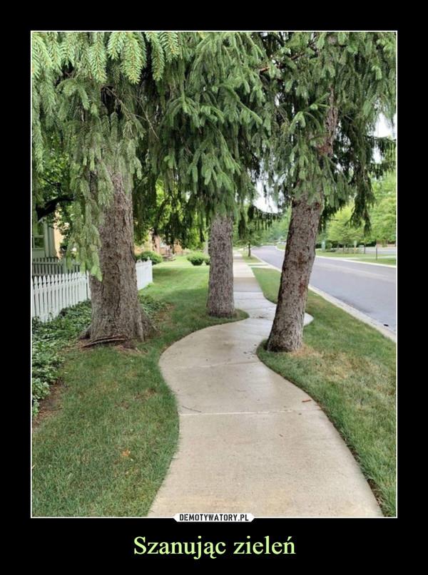 Szanując zieleń –