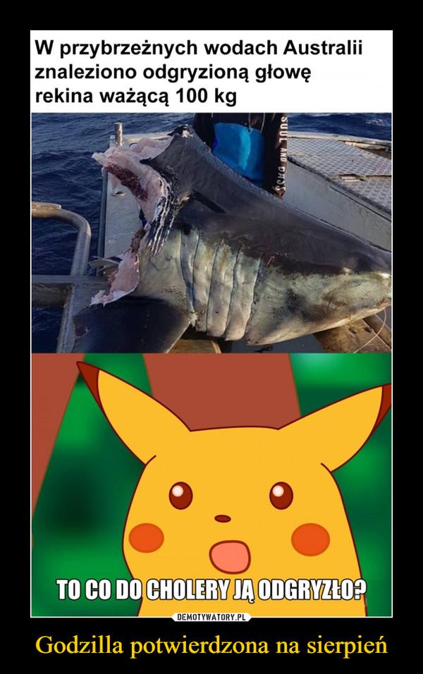 Godzilla potwierdzona na sierpień –  W przybrzeżnych wodach Australii znaleziono odgryzioną głowę rekina ważącą 100 kg To co do cholery ją odgryzło?