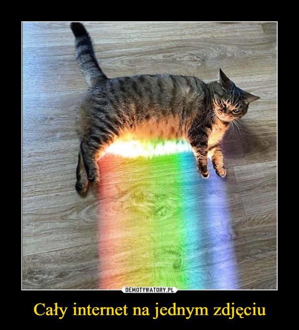Cały internet na jednym zdjęciu –