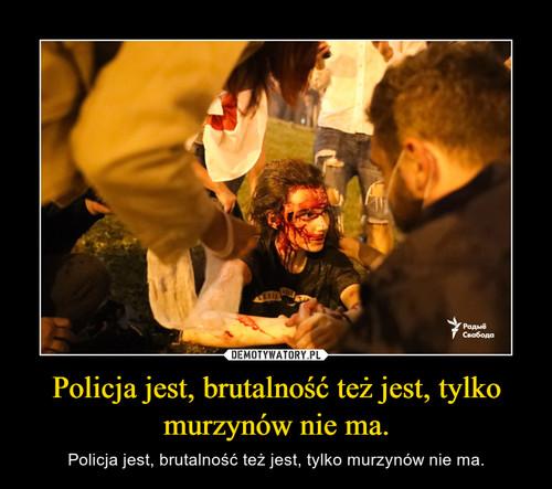 Policja jest, brutalność też jest, tylko murzynów nie ma.