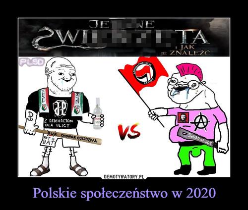 Polskie społeczeństwo w 2020