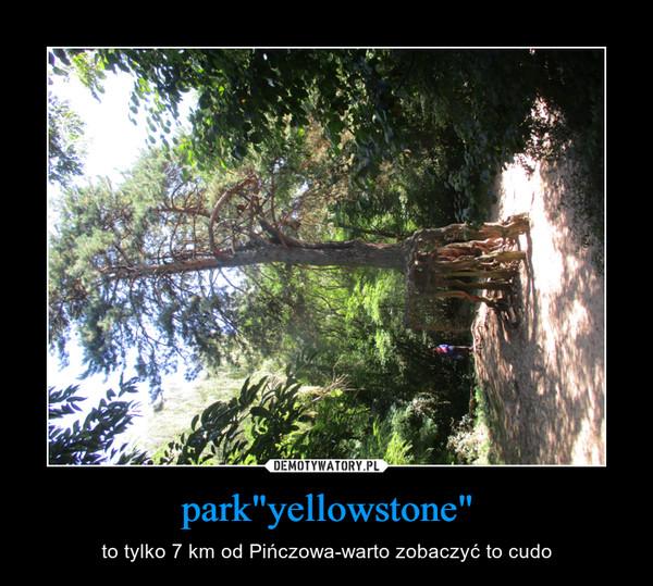 """park""""yellowstone"""" – to tylko 7 km od Pińczowa-warto zobaczyć to cudo"""