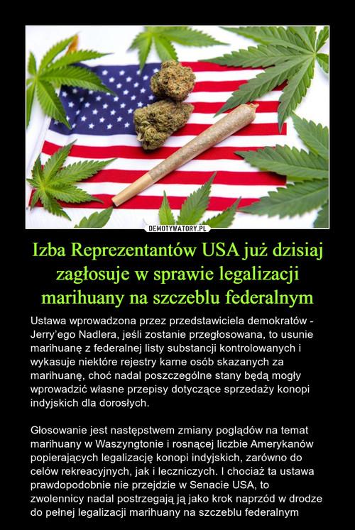 Izba Reprezentantów USA już dzisiaj zagłosuje w sprawie legalizacji marihuany na szczeblu federalnym