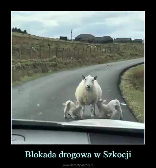 Blokada drogowa w Szkocji –