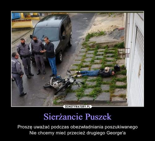Sierżancie Puszek