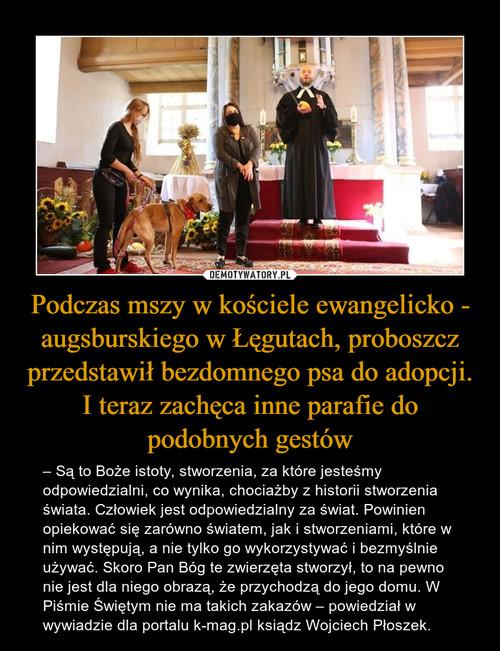 Podczas mszy w kościele ewangelicko - augsburskiego w Łęgutach, proboszcz przedstawił bezdomnego psa do adopcji. I teraz zachęca inne parafie do podobnych gestów