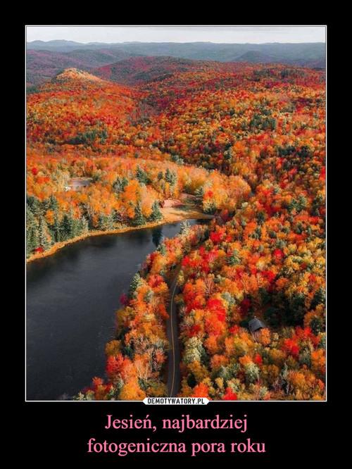 Jesień, najbardziej fotogeniczna pora roku