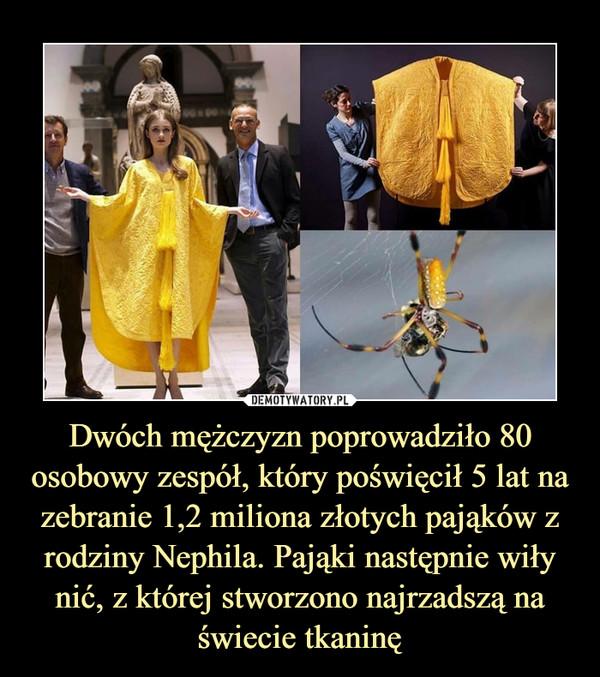 Dwóch mężczyzn poprowadziło 80 osobowy zespół, który poświęcił 5 lat na zebranie 1,2 miliona złotych pająków z rodziny Nephila. Pająki następnie wiły nić, z której stworzono najrzadszą na świecie tkaninę –