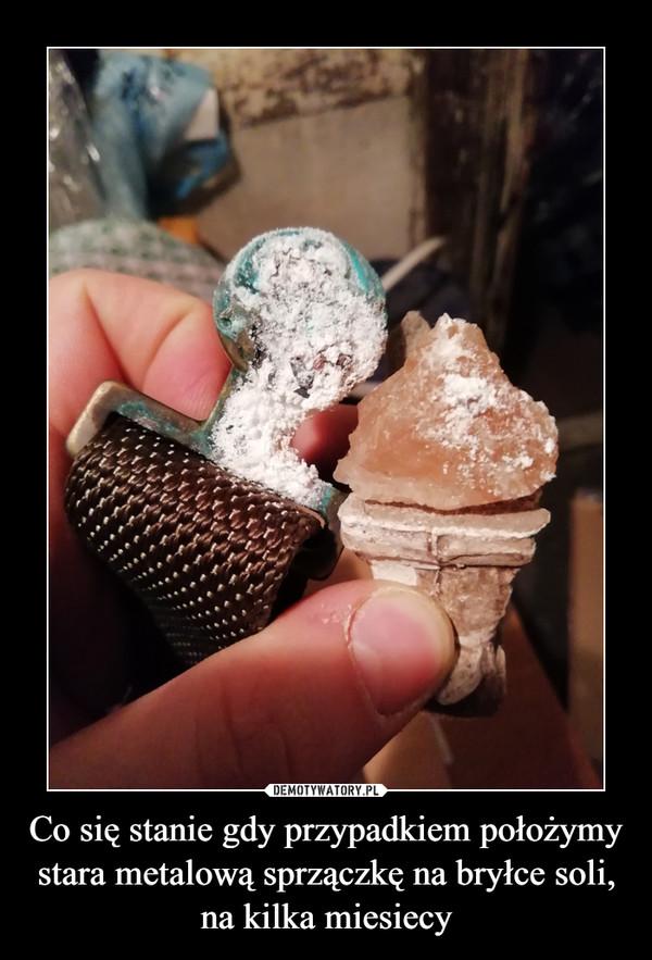 Co się stanie gdy przypadkiem położymy stara metalową sprzączkę na bryłce soli, na kilka miesiecy –
