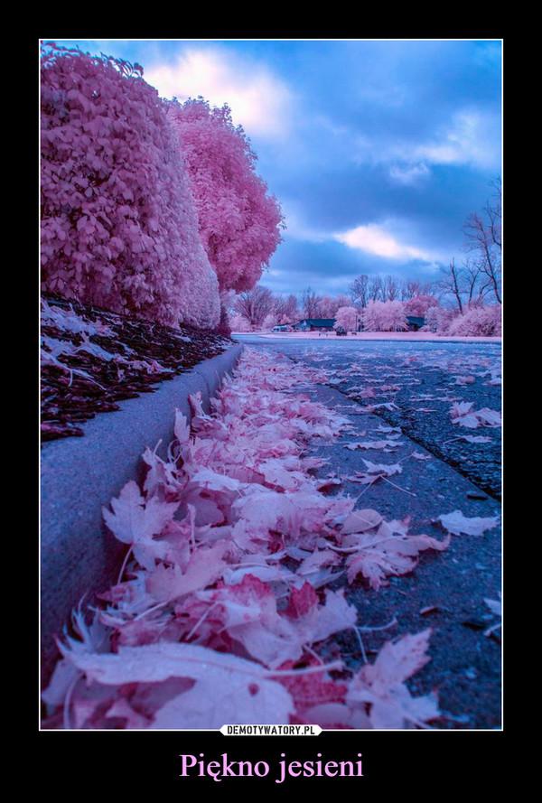 Piękno jesieni –