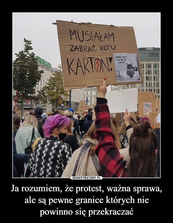 Ja rozumiem, że protest, ważna sprawa, ale są pewne granice których nie powinno się przekraczać –