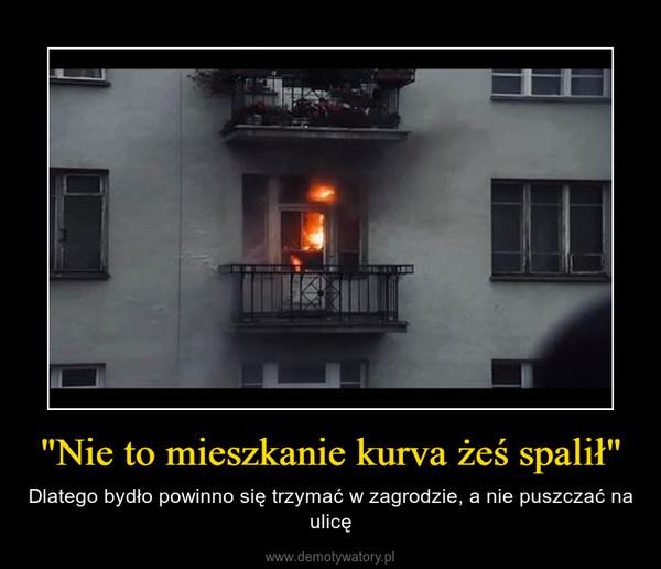 """""""Nie to mieszkanie kurva żeś spalił"""" – Dlatego bydło powinno się trzymać w zagrodzie, a nie puszczać na ulicę"""