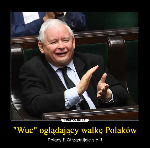 """""""Wuc"""" oglądający walkę Polaków – Polacy !! Otrząśnijcie się !!"""