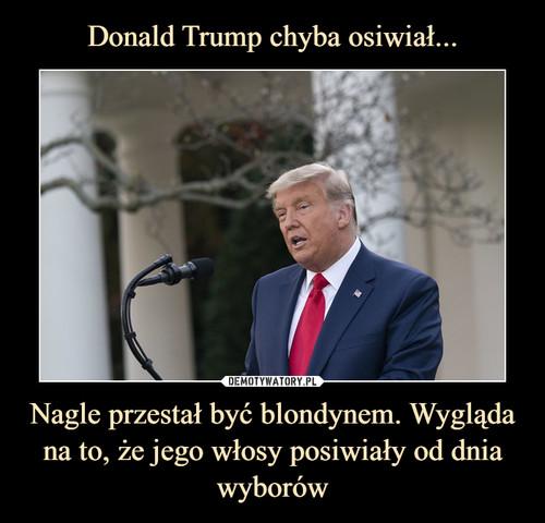 Donald Trump chyba osiwiał... Nagle przestał być blondynem. Wygląda na to, że jego włosy posiwiały od dnia wyborów