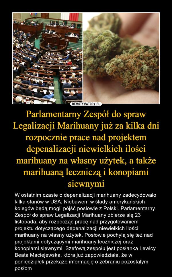 Parlamentarny Zespół do spraw Legalizacji Marihuany już za kilka dni rozpocznie prace nad projektem depenalizacji niewielkich ilości marihuany na własny użytek, a także marihuaną leczniczą i konopiami siewnymi – W ostatnim czasie o depenalizacji marihuany zadecydowało kilka stanów w USA. Niebawem w ślady amerykańskich kolegów będą mogli pójść posłowie z Polski. Parlamentarny Zespół do spraw Legalizacji Marihuany zbierze się 23 listopada, aby rozpocząć pracę nad przygotowaniem projektu dotyczącego depenalizacji niewielkich ilości marihuany na własny użytek. Posłowie pochylą się też nad projektami dotyczącymi marihuany leczniczej oraz konopiami siewnymi. Szefową zespołu jest posłanka Lewicy Beata Maciejewska, która już zapowiedziała, że w poniedziałek przekaże informację o zebraniu pozostałym posłom