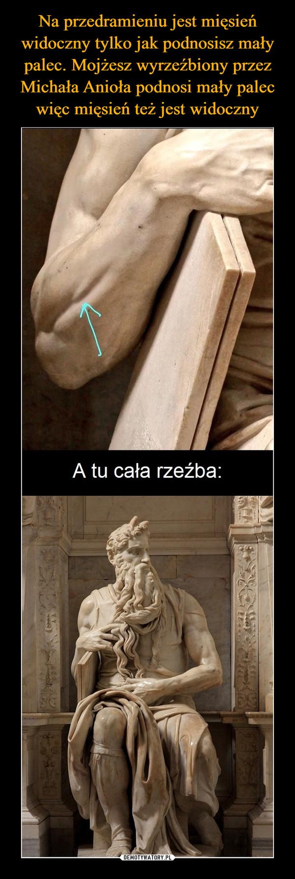 –  A tu cała rzeźba:
