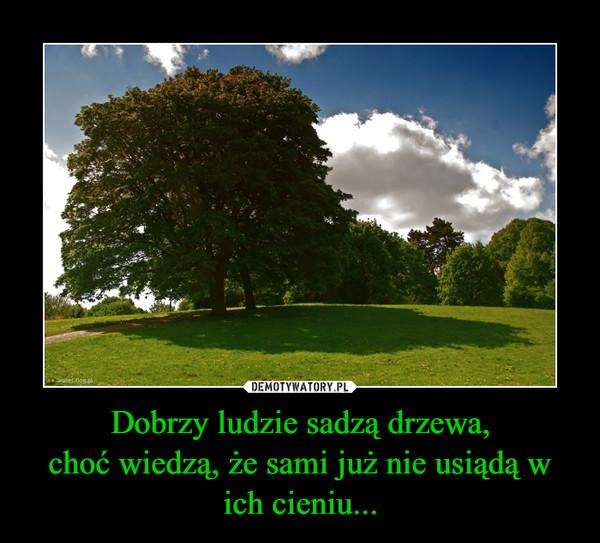 Dobrzy ludzie sadzą drzewa,choć wiedzą, że sami już nie usiądą w ich cieniu... –