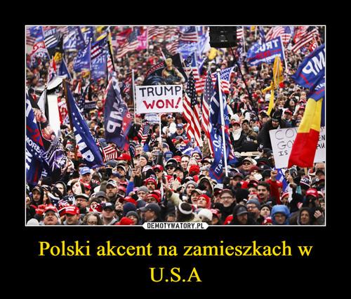 Polski akcent na zamieszkach w U.S.A