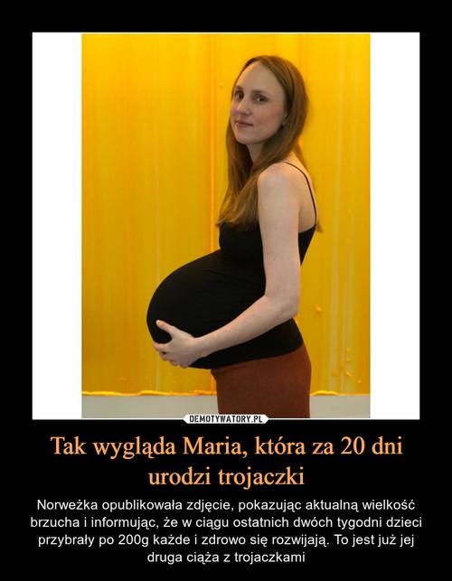 Tak wygląda Maria, która za 20 dni urodzi trojaczki