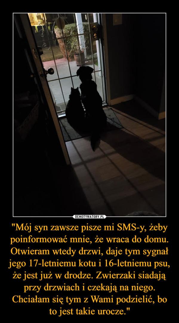 """""""Mój syn zawsze pisze mi SMS-y, żeby poinformować mnie, że wraca do domu. Otwieram wtedy drzwi, daje tym sygnał jego 17-letniemu kotu i 16-letniemu psu, że jest już w drodze. Zwierzaki siadają przy drzwiach i czekają na niego. Chciałam się tym z Wami podzielić, bo to jest takie urocze."""" –"""