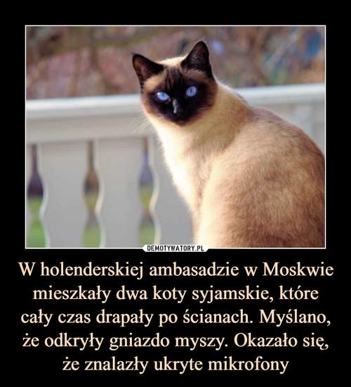 W holenderskiej ambasadzie w Moskwie mieszkały dwa koty syjamskie, które cały czas drapały po ścianach. Myślano, że odkryły gniazdo myszy. Okazało się, że znalazły ukryte mikrofony